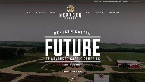 ex-next-gen